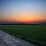 Sonnenuntergang am Feldweg