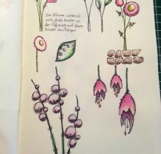 Meine Blumen-Fundstücke