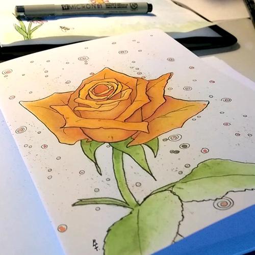 Aquarell Rose in Orange