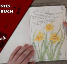 Mein erstes Skizzenbuch – Sketchbook Tour Videos