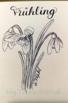 Quick Sketch #23 - Schneeglöckchen