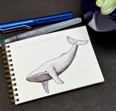 Inktober 2018 – Wal