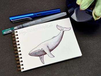 12 Inktober - Wal